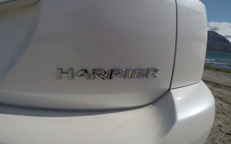 Harrier 6
